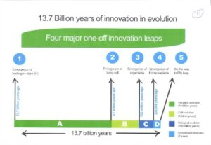 infographic on innovation in evolution
